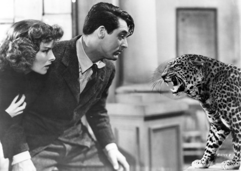 QC Charm School: Watch Screwball Comedies